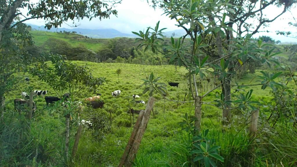 chautauqua-ecuador-2016