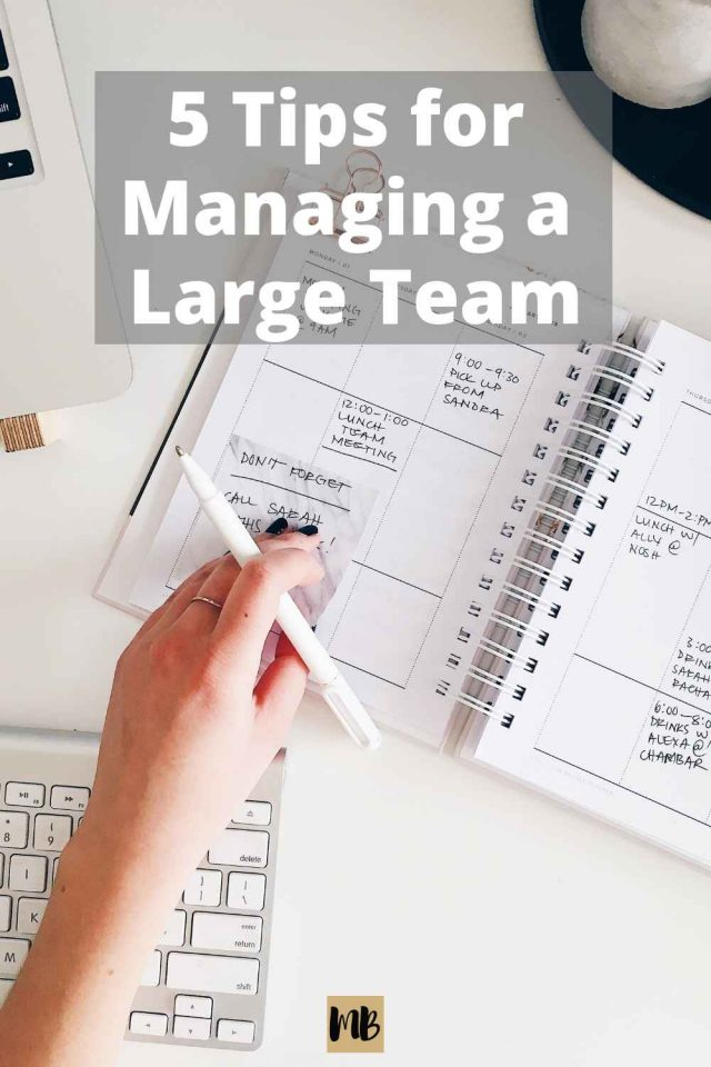 5 Tips Managing Large Team