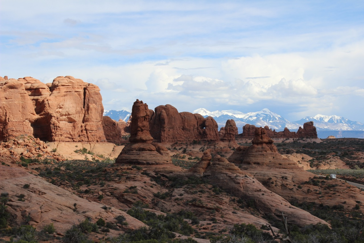 Arches National Park Dogs
