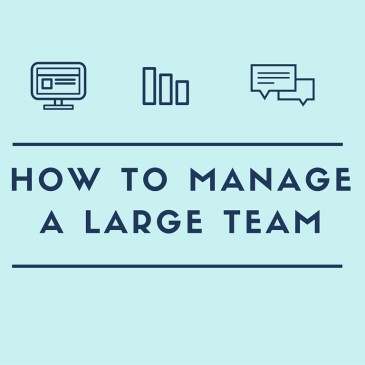 How to Manage a Large Team