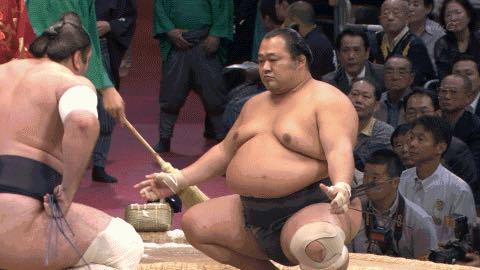 sumo-wrestler-pic