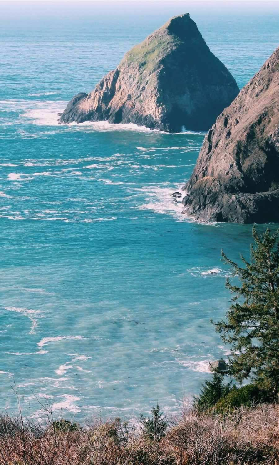 On my travel bucket list! This is great Oregon coast road trip itinerary.