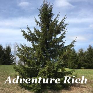 adventure-rich