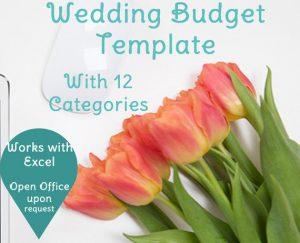 wedding-budget-planner-12-category-spreadsheet