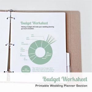 wedding-budget-planner-detailed-spreadsheet