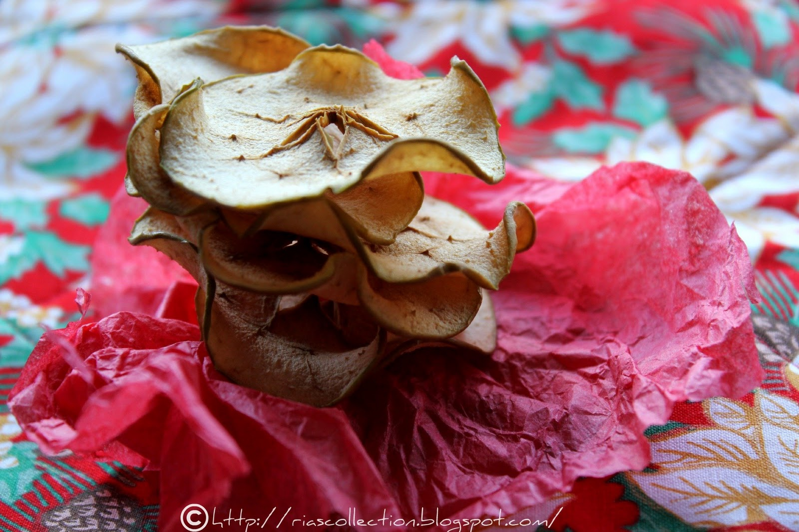 Bake Apple Chips Cheap and Fun Activities for Kids Fall