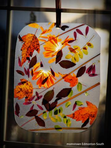 fall leaf window hanging diy crafts for kids activities