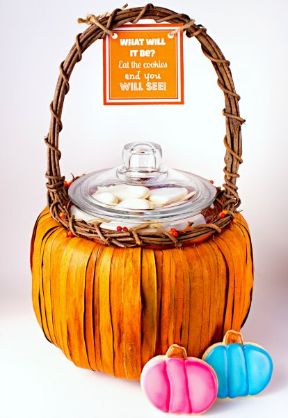 cookie gender reveal pumpkin fall party ideas cheap