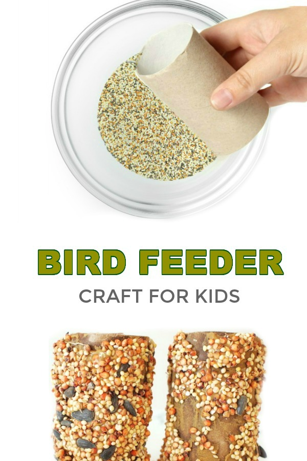 Homemade bird feeder diy crafts for kids fun and cheap