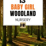 13 Baby Girl Woodland Nursery Ideas