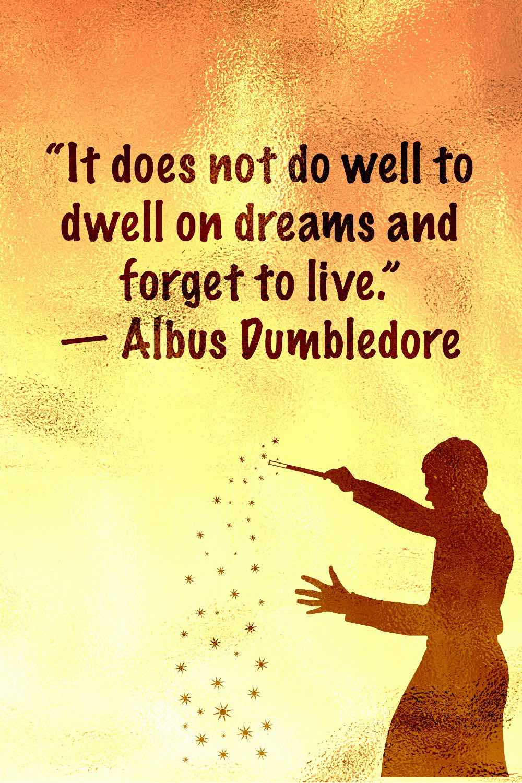 Harry Potter Dumbledore quotes