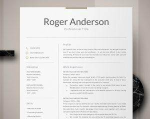 executive resume sample for gettin the interview