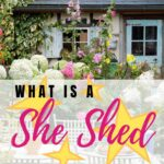 WHAT IS A SHE SHEER SHE SHED PIN