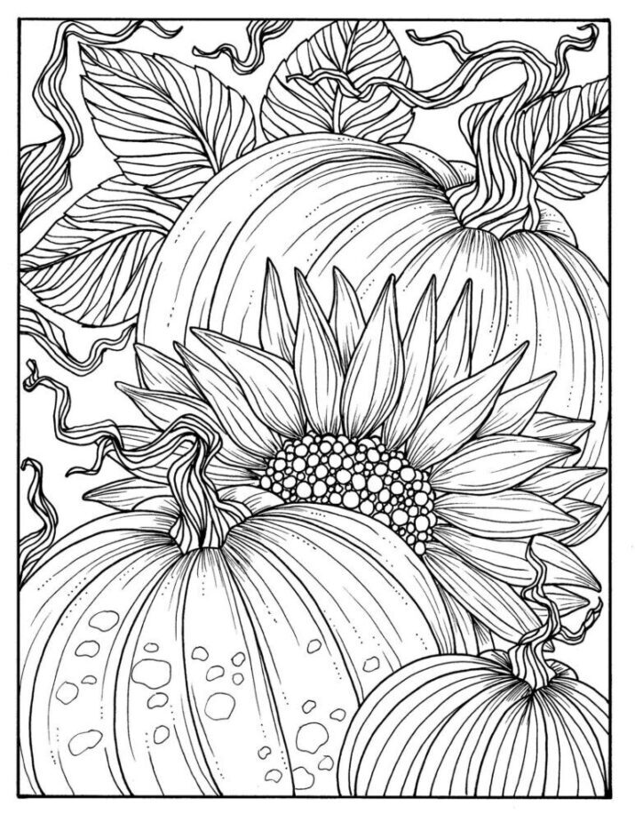 pumpkin coloring pages fall halloween thanksgiving etsy downloadable printable
